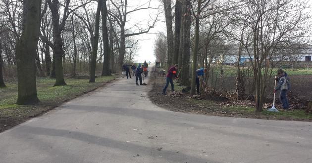 An einer Straße mit vielen Bäume stehen einige Menschen, die Laub rechen und Müll auflesen.