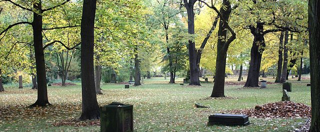 Einzelne Grabsteine und Bäume auf dem Alten Johannisfriedhof im Herbst