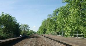 Altes Gleisbett aus Kies und Schotter und alte Bahnsteige, gesäumt von Bäumen. Auf dem linken Bahnsteig sitzen ein Mann und eine Frau.