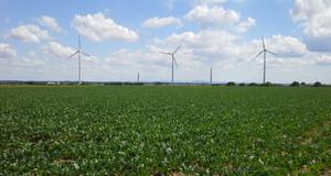 drei Windräder auf einem Feld vor blauem Himmel