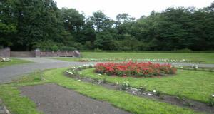 Rosengarten im Mariannenpark