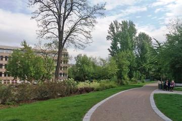 Bild wird vergrößert: Ein geschwungener Weg führt durch eine grüne Fläche mit Bäumen und Sträuchern, rechts im Bild sitzen zwei Personen auf einer Parkbank.