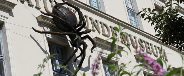 Frontansicht des Naturkundemuseums mit Schriftzug und großer schwarzer Spinne am Gebäude