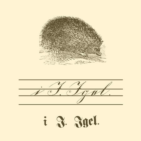 """Übungstafel einer deutschen Fibel von 1886 mit Motiv Igel, sowie kleinem und großem Buchstaben """"I"""" in Schreib- und Druckschrift."""