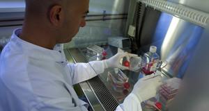 Mitarbeiter sitzend im Labor mit Gummihandschuhen und einer Pipette in der Hand, hantiert mit roten Flüssigkeiten