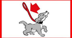 Logo mit Grafik eines Hundes an der Leine mit rotem Pfeil der auf die Leine