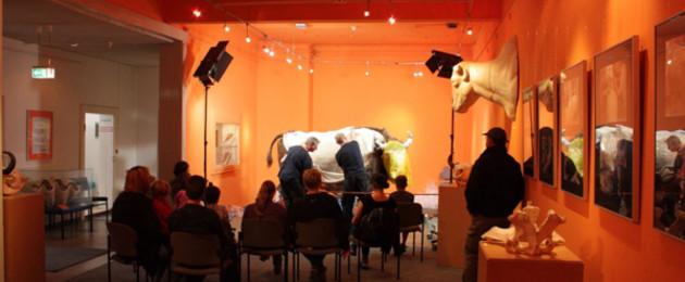 Livepräparation eines Wisents im Naturkundemuseum vor Publikum