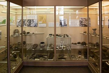 Bild wird vergrößert: Exponate der Ausstellung Ur- und Frühgeschichte im Naturkundemuseum