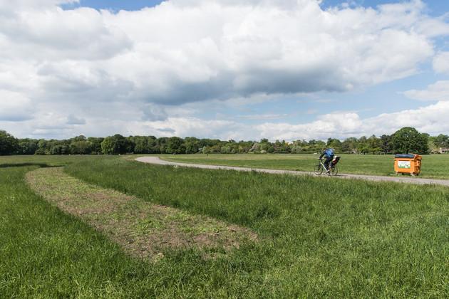 auf einer Wiese angelegtes Blumenbeet, im Hintergrund ein Radfahrer