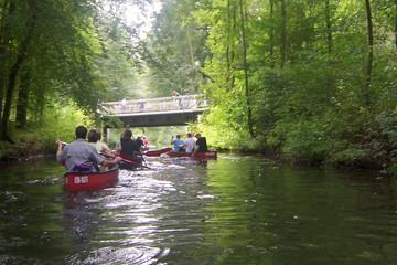 Bild wird vergrößert: Kanus auf einem Fluß im Auwald