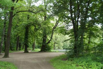 Bild wird vergrößert: im Abtnaundorfer Park
