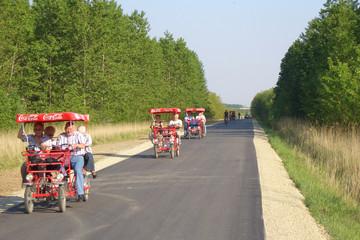 Bild wird vergrößert: Foto des frisch asphaltierten und verbreiterten Rundwegs Cospudener See 2007 mit drei Kremserrädern und Wald
