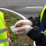 Ein bei Frühjahrsputzaktion in Leipzig-Portitz geretteter Grasfrosch wird von einem Menschen in der Hand gehalten