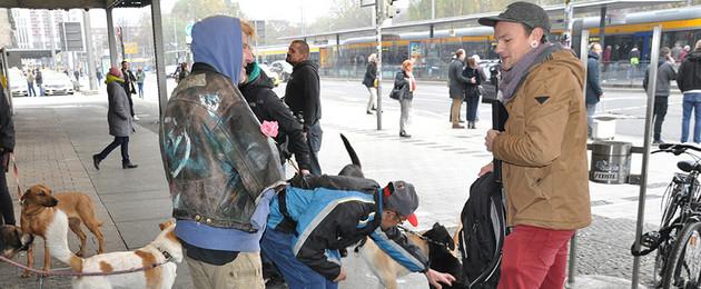 Treffpunkt am Haupbahnhof: mehrere Menschen und Hunde stehen im Kreis