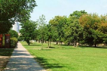 Bild wird vergrößert: im Lene-Voigt-Park