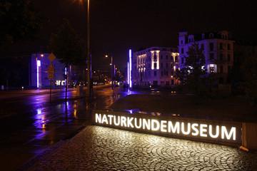 Bild wird vergrößert: Leuchtreklame mit dem Schriftzug Naturkundemuseum in der Nacht