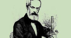 Porträt Emil Adolf Roßmäßler