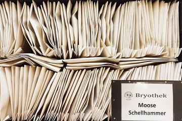 Bild wird vergrößert: Kasten mit 150 gefalteten Papiertüten der Moossammlung von Dr. Ludwig Schellhammer