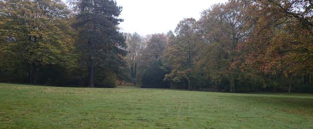 Wilhelm-Külz-Park im Herbst