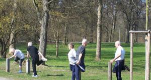 Senioren bei Dehnungsübungen in einem Park