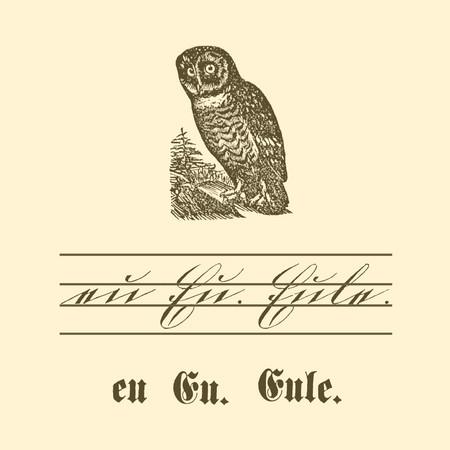 """Übungstafel einer deutschen Fibel von 1886 mit Motiv Eule, sowie kleinem und großem Buchstaben """"E"""" in Schreib- und Druckschrift."""