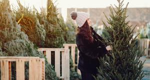 Eine Frau mit Bommelmütze sucht sich einen Weihnachtsbaum aus