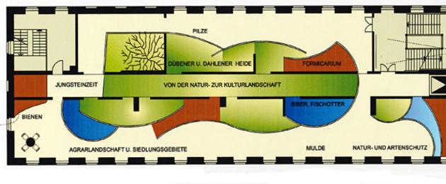 Plan einer Raumgestaltung des Naturkundemuseums