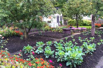 Bild wird vergrößert: Kleingarten mit Gemüse- und Blumenbeeten und Obstbäumen