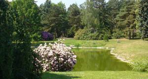 Teich auf dem Südfriedhof
