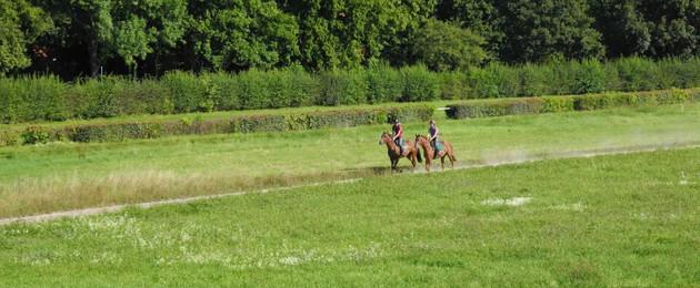 Zwei Reiter auf der Pferderennbahn Scheibenholz