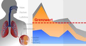 Grafik eins menschlichen Oberkörpers mit schematischer Darstellung des Atemtraktes kombiniert mit einem Diagramm, welches den Verlauf eines Luftschadstoffes sowie Grenzwertes symbolisiert