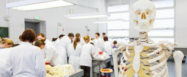 Menschen in weißen Kitteln haben sich um Tische geschart, vor denen ein menschliches Skelett steht