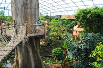 Bild wird vergrößert: Zoo Leipzig - Gondwanaland