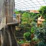 Zoo Leipzig - Gondwanaland