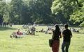 Menschen liegen auf einer Wiese im Clara-Zetkin-Park