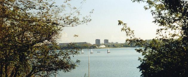 Blick auf den Kulkwitzer See