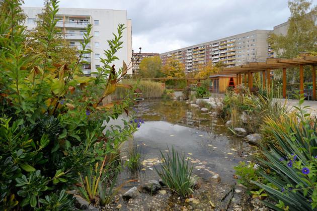 Teich in Plattenbausiedlung Grünau