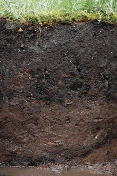 Bild wird vergrößert: Ein Stück aufgegrabener Boden mit einem Messstab. Ober ist die Rasenkante zu sehen und unten steht etwas Wasser.