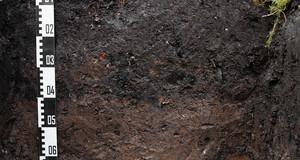 Ein Stück aufgegrabener Boden mit einem Messstab. Ober ist die Rasenkante zu sehen und unten steht etwas Wasser.