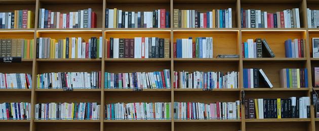 Regal aus Holz mit vielen Büchern