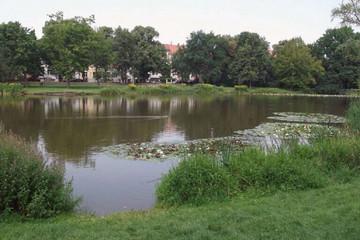 Bild wird vergrößert: Teich im Arthur-Bretschneider-Park