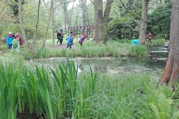 Bild wird vergrößert: Schüler im Botanischen Lehrgarten. Im Vordergrund ist ein großer Teich.
