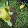 Die Beine von zwei Kinden mit Gummistiefeln und Regenhose auf einer nassen Wiese