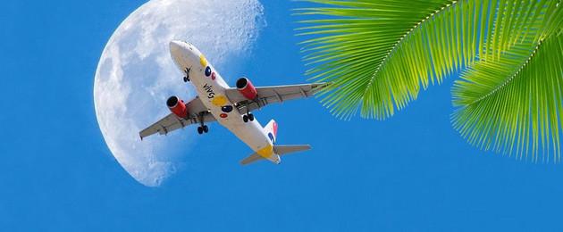 Flugzeug am blauen Himmel mit Palmen