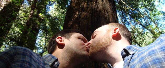 Zwei Männer küssen sich in einem Wald unter einem Baum.