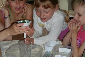 Bild wird vergrößert: Kinder beim Experimentieren mit einem Glas und Murmeln in einem Trichter.
