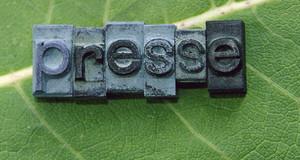 """Ein Blatt mit aufgelegten Stempebuchstaben """"Presse"""""""