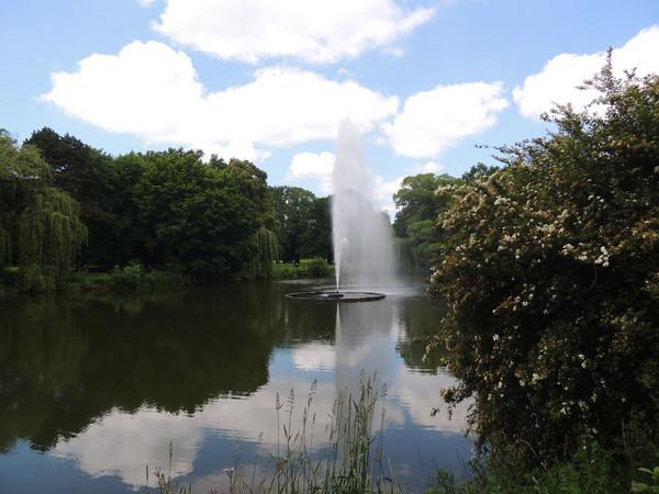 auf einem Teich schwimmende Fontäne im Palmengarten